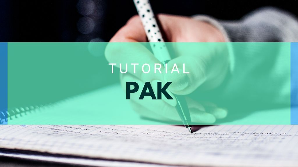 Tutorial PAK November 2019